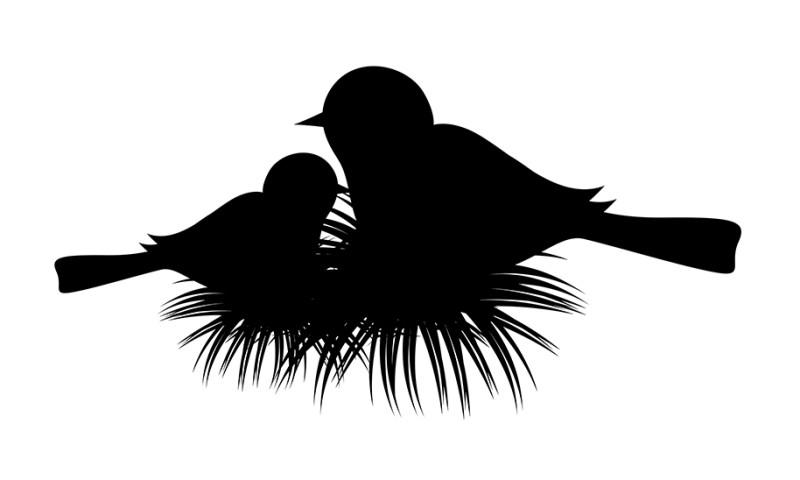 Baby Bird Icon